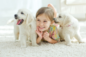 memories with pets